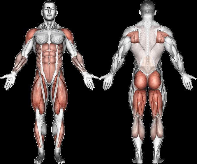 Kettlebell Swing - One Arm Variation - Kettlebell Central